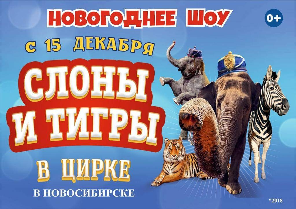 Ижевский цирк купить билет онлайн афиша анна каренина театр вахтангова